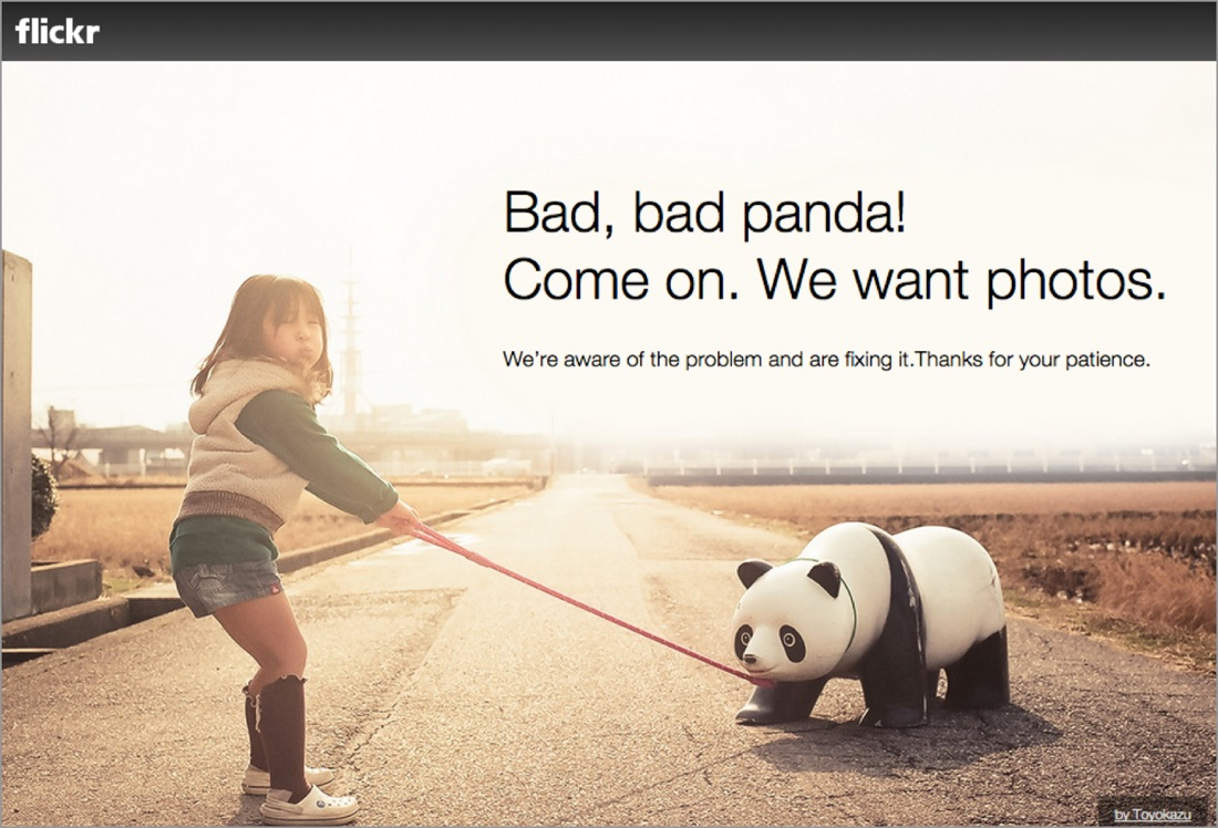 Flickr pairs sad news with a lighthearted photo to keep your spirits up
